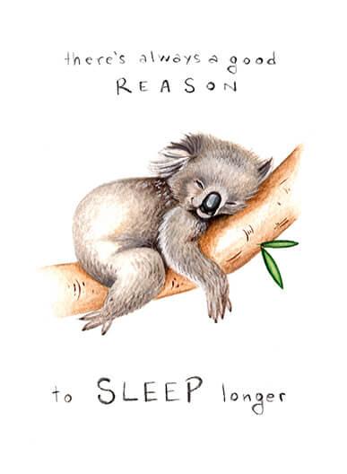arianna usai koala